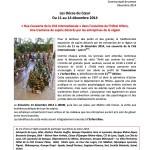 Communiqué lancement - Décos Du Coeur 2014 - copie